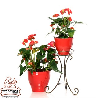 Кованая подставка для цветов 70-061