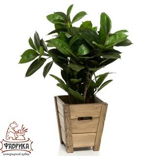 Кадка для растений 59-334