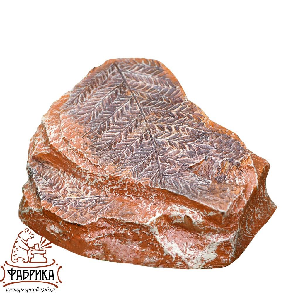 Камень с папоротником