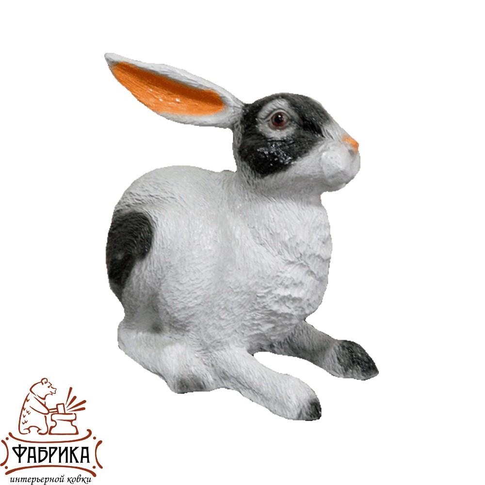 Заяц ушастый F07429