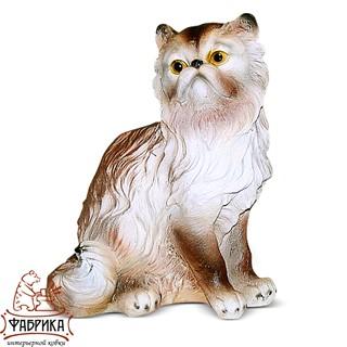 Кошка персидская F 01209